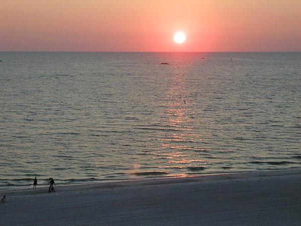Saffron Time Florida